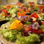 Domaine de velle salade