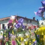 chambres d'hôtes zoeken Ferme Beauregard les Pyrenees huis