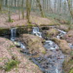 chambres-dhotes-zoeken-la-grange-vieille-waterval