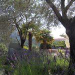 Op reis in frankrijk tuin